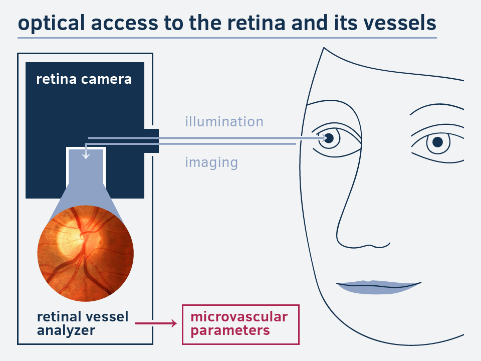 The eye as a mirror: How our technology works